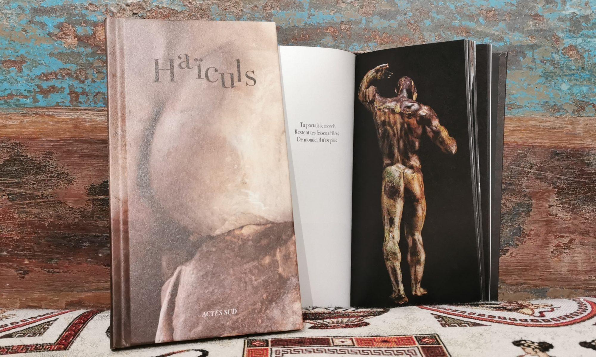 Haïculs lecture à Arles