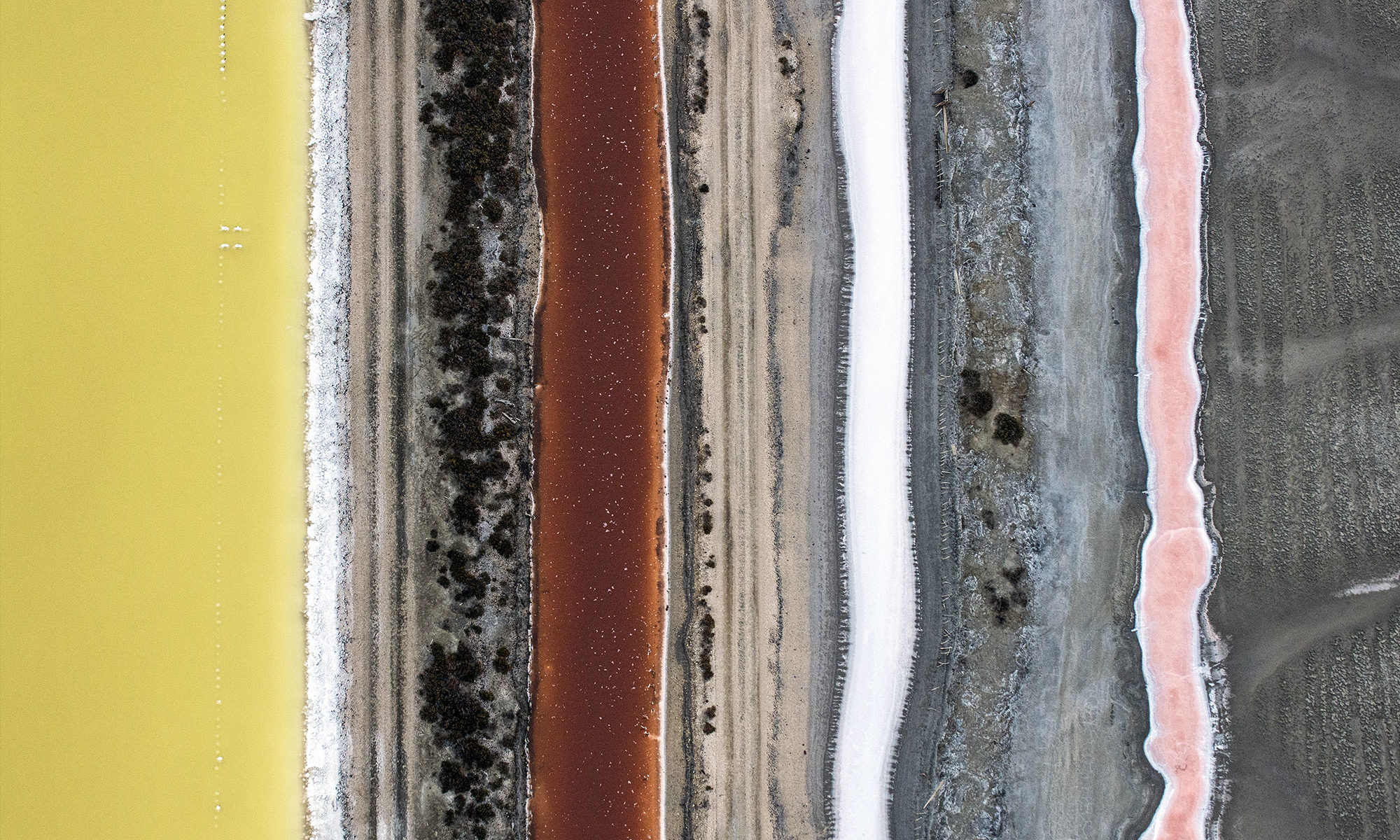 Grain de sel - Thierry Vezon - De natura rerum 2021
